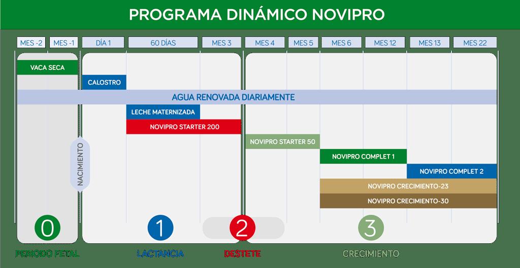 programa-dinamico